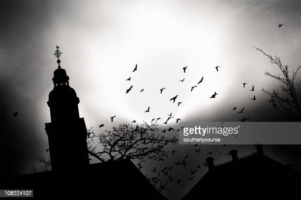 Spooky Silhouette of Church and Birds Flying
