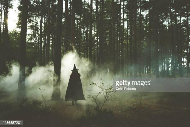 spooky witch - hexe stock-fotos und bilder