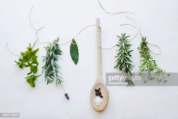Spoon and sprigs of herbs
