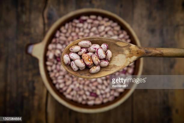 spoon of dried pinto beans - pinto bean - fotografias e filmes do acervo