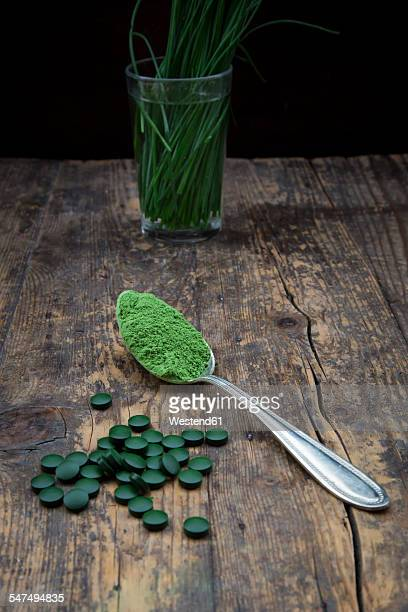 spoon of wheatgrass powder and wheatgrass tablets - wheatgrass stock photos and pictures