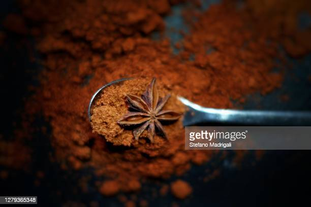spoon with spice powder and anise seed, black slate background - anise stock pictures, royalty-free photos & images