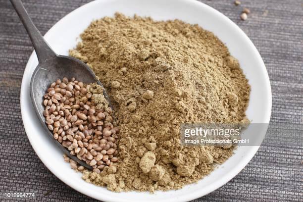 A spoonful of hemp seeds and a bowl of hemp flour