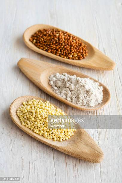 Spoons of Golden and brown millet and millet meal