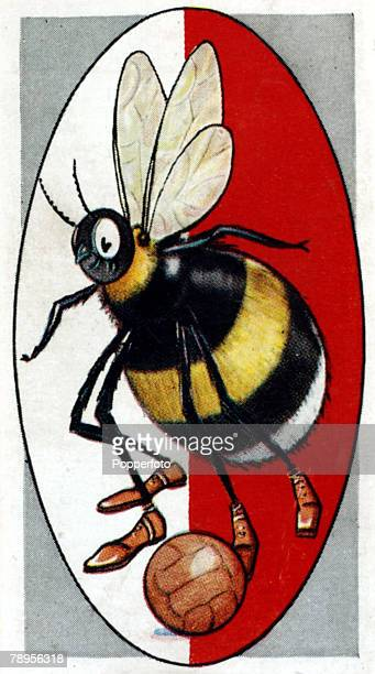 Sport Football Illustration Caricature/Nicknames pic circa 1930's Brentford nicknamed the 'Bees' The club was formed in 1889