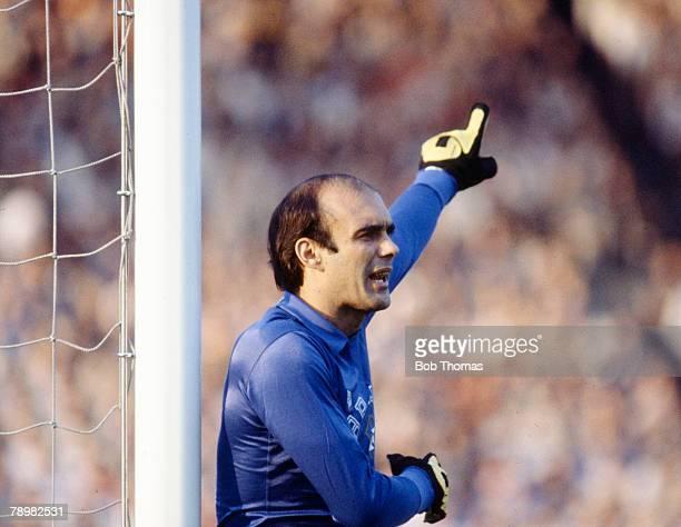 19th May 1981 International Match West Germany 1 v Brazil 2 Valdir Peres Brazil goalkeeper
