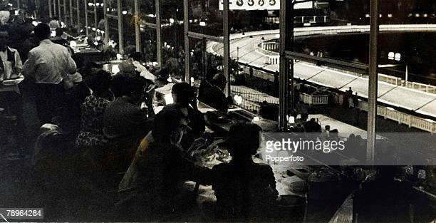 Sport Greyhound Racing 1950's White City London England Customers watch the racing through the large glass fronted restaurant window