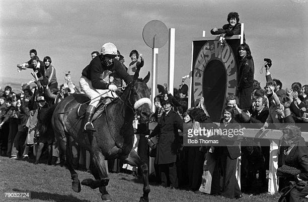 Sport Horse Racing The Grand National Aintree Liverpool England 2nd April 1977 The horse Red Rum ridden by jockey Tommy Stack wins the race for an...
