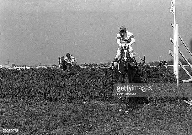Sport Horse Racing The Grand National Aintree Liverpool England 4th April 1981 The horse Aldaniti ridden by jockey Bob Champion clears the final...
