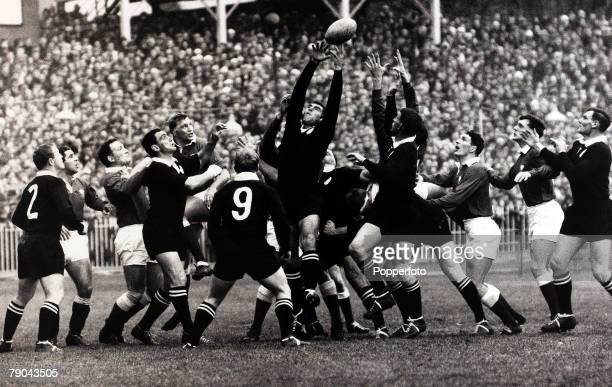 Sport, Rugby Union International, Cardiff Arms Park, Wales v New Zealand, 11th November 1967, The All Blacks win possession at a line-out