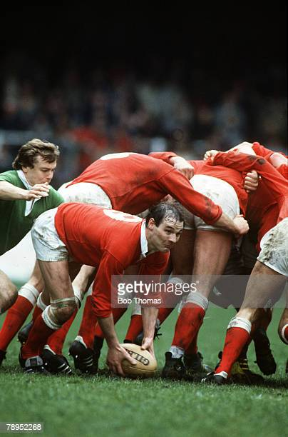 Sport, Rugby Union, pic: 7th April 1984, Representative Match in Cardiff, Wales v WRU Presidents XV, Wales' scrum half Terry Holmes feeds the ball...
