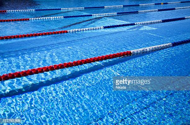 sport swimming pool - length stock pictures, royalty-free photos & images