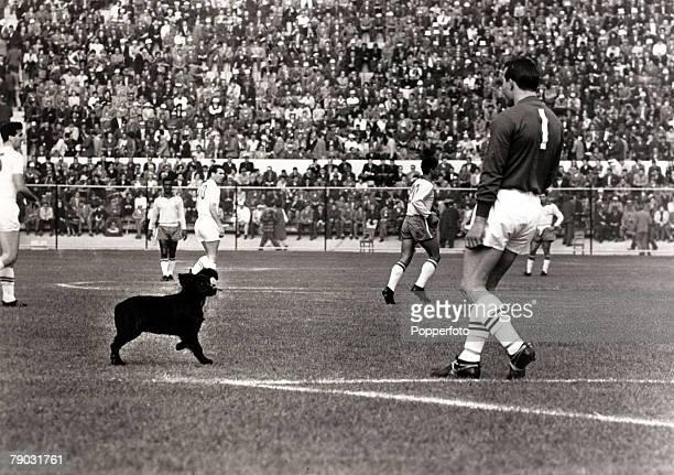 Sport/Football 1962 World Cup Finals Vina Del Mar Chile Quarter Final 10th June 1962 Brazil 3 v England 1 England goalkeeper Ron Springett moves to...