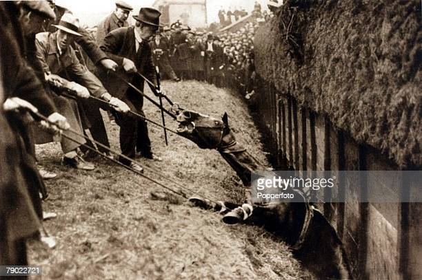 Sport/Horse Racing The Grand National Steeplechase Aintree A serious incident at Becher's Brook in the 1930 Grand National as men use ropes to try...