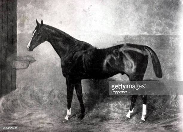 Sport/Horse Racing, The Grand National Steeplechase, Aintree, Illustration, The 1895 Grand National winner Wild Man of Borneo