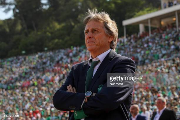 Sporting CP head coach Jorge Jesus from Portugal during the Portuguese Cup Final match between CD Aves and Sporting CP at Estadio Nacional on May 20...