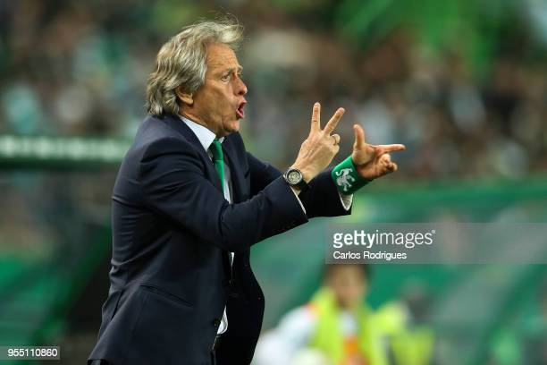 Sporting CP head coach Jorge Jesus from Portugal during the Portuguese Primeira Liga match between Sporting CP and SL Benfica at Estadio Jose...