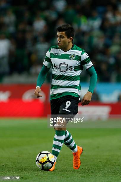 Sporting CP Midfielder Marcos Acuna from Argentina during the Sporting CP v FC Porto Portuguese Cup semi finals 2 leg at Estadio Jose Alvalade on...