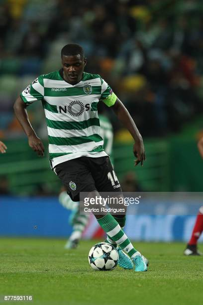 Sporting CP midfielder William Carvalho from Portugal during the UEFA Champions League match between Sporting CP and Olympiakos Piraeus at Estadio...