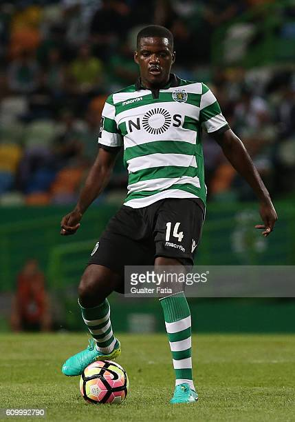 Sporting CP's midfielder William Carvalho in action during the Primeira Liga match between Sporting CP and Estoril Praia at Estadio Jose Alvalade on...