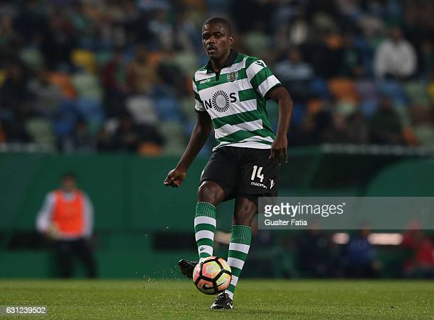 Sporting CP's midfielder William Carvalho in action during the Primeira Liga match between Sporting CP and CD Feirense at Estadio Jose Alvalade on...