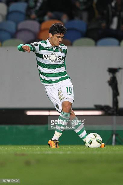 Sporting's forward Fredy Montero during the match between Sporting CP and A Academica de Coimbra for the Portuguese Primeira Liga at Jose Alvalade...