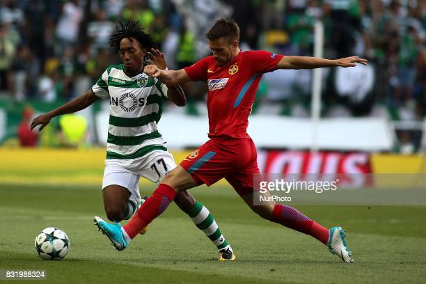 Sporting's forward Gelson Martins vies with Steaua Bucuresti midfielder Mihai Pintilii during the UEFA Champions League football match between...