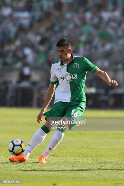 Sporting's midfielder Rodrigo Battaglia from Argentina in action during the Portugal Cup Final football match CD Aves vs Sporting CP at the Jamor...