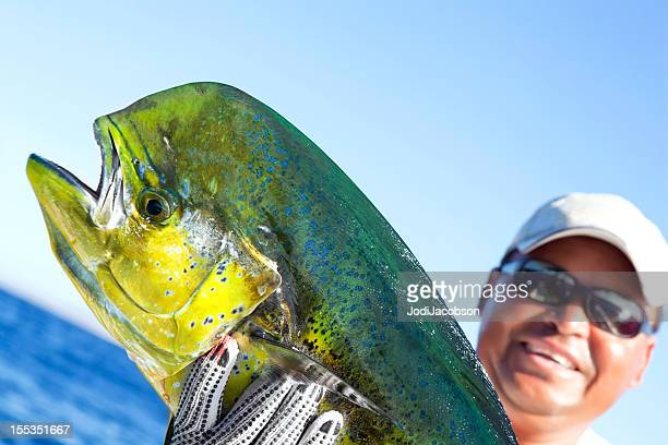 sports: dorado a successful day of fishing - dolphin fish stock pictures, royalty-free photos & images