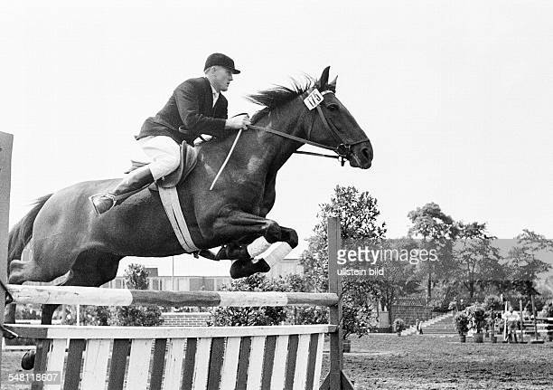 sports equestrianism horse show 1965 in Bottrop show jumping horse and horseman jump over a barrier aged 30 to 40 years DBottrop Ruhr area North...