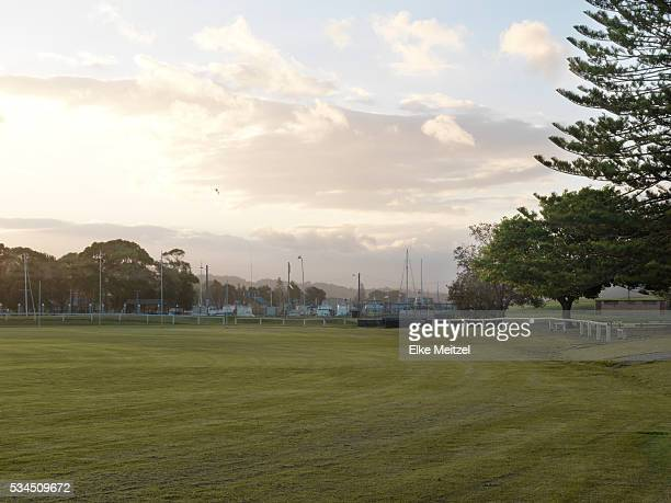 cricket ground background stock photos and pictures getty images