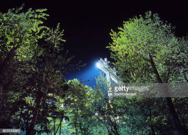 Sports stadium floodlights illuminating stadium and surrounding trees