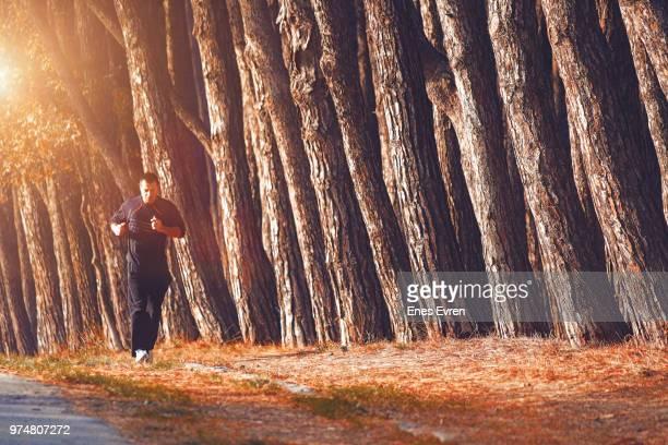 Sportsman jogging in wood