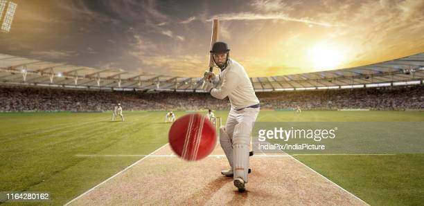 a sportsman playing cricket in the stadium as viewers cheer on - cricket pitch stock pictures, royalty-free photos & images