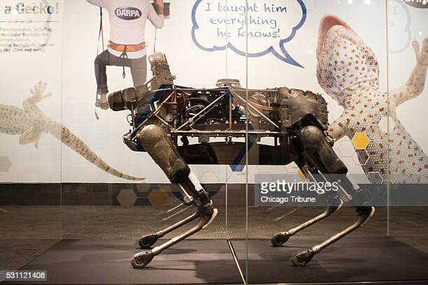 Spot a remotely controlled robot developed by Boston Dynamics is on display at DARPA Redefining Possible which opens at The Museum of Science and...