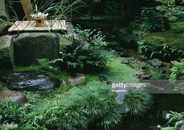Spot Garden