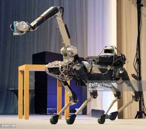 Spot Mini a fourlegged robot developed by USbased robotics company Boston Dynamics is on display at a SoftBank Group Corp event in Tokyo on July 20...