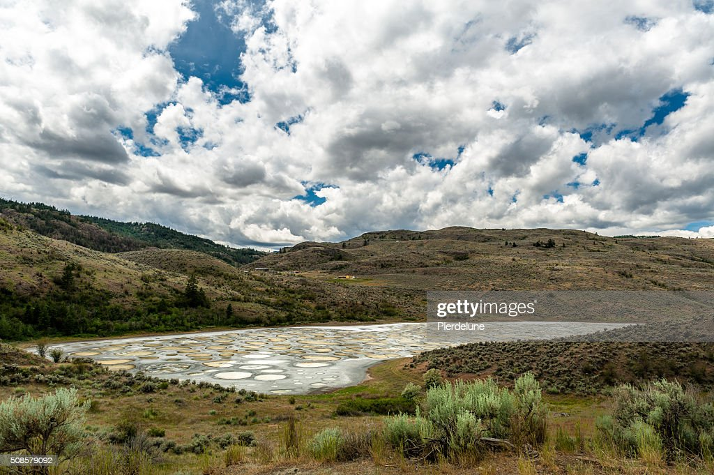 Spotted Lake in Okanagan valley : Stock Photo