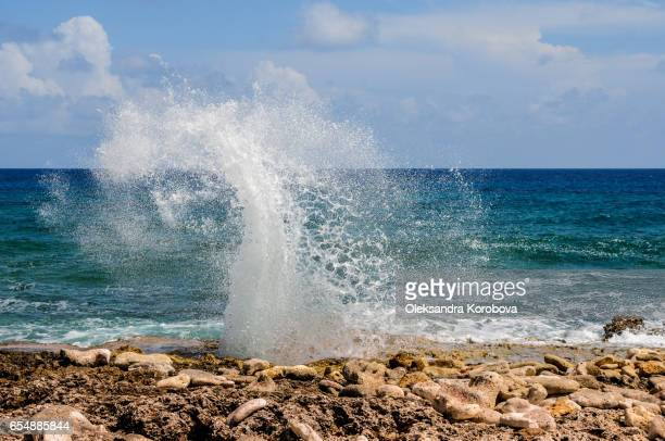 spray from the famous blow holes on the south coast of grand cayman, cayman islands. - istock stock-fotos und bilder