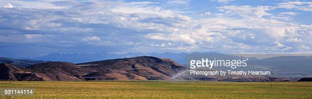 spray of water irrigates a field with mountains and sky beyond - timothy hearsum stock-fotos und bilder
