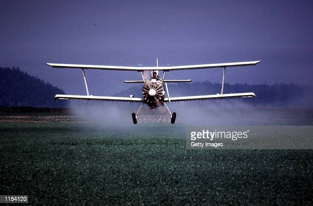 A spray plane sprays pesticide on peas New fears of the longterm dangers of common farm pesticides has led US Environmental Protection Agency to...