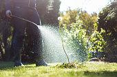 Spraying weeds in the garden