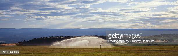 sprays of water irrigate a field with mountains and sky beyond - timothy hearsum stock-fotos und bilder
