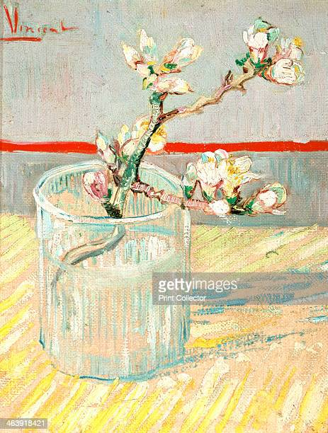 'Sprig of Flowering Almond Blossom in a Glass' 1888 From the Van Gogh Museum Amsterdam