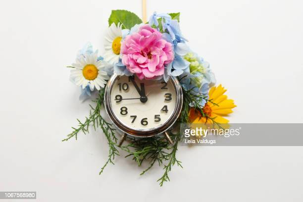spring and summer time clock - conceptual nature - tijdmeter stockfoto's en -beelden