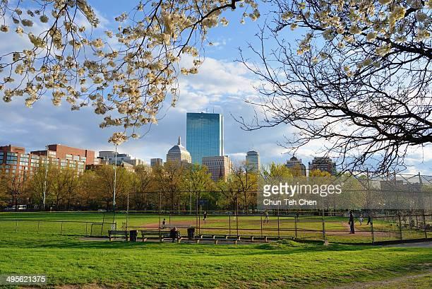 Spring at Boston Common