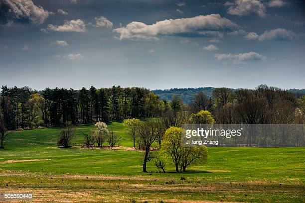 Spring at Valley Forge