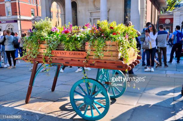 spring blooms, covent garden - covent garden stock pictures, royalty-free photos & images