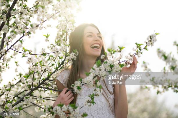 spring brings cheerfulness - lace textile stock pictures, royalty-free photos & images