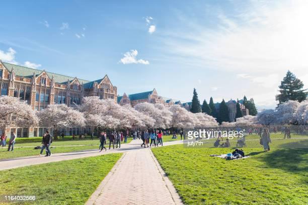 ワシントン大学スプリングキャンパス - ワシントン大学 ストックフォトと画像